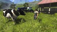 Rinder in der Farming Simulator 2013