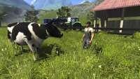 Rinder in der Farming Simulator 2013