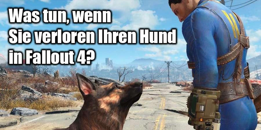 Fehlende Dogmeat in Fallout 4