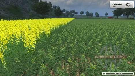 textures HD pour FS 13