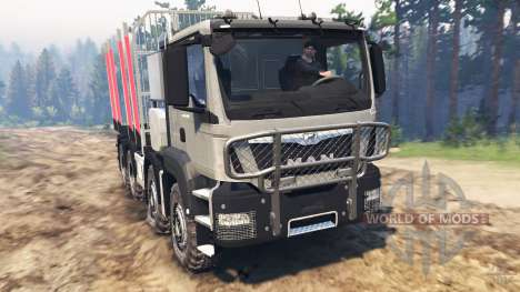 SpinTires MAN TGS 41.480