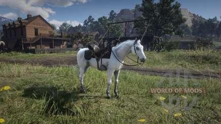 Red Dead Redemption 2: cheval de bataille