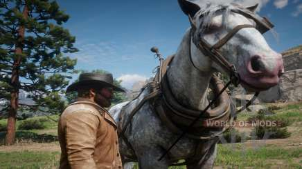 Red Dead Redemption 2: how to clean a horse