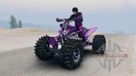 ATV für Spin Tires