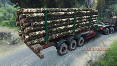 Trailer-Holz für Spin Tires