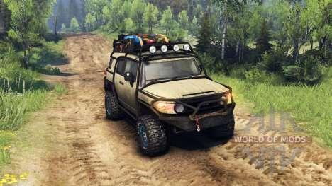 Toyota FJ Cruiser Braun für Spin Tires