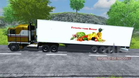 Semi-réfrigérés, KRONE Koffer Cool Liner pour Farming Simulator 2013