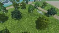 De nouvelles textures des arbres et de l'herbe