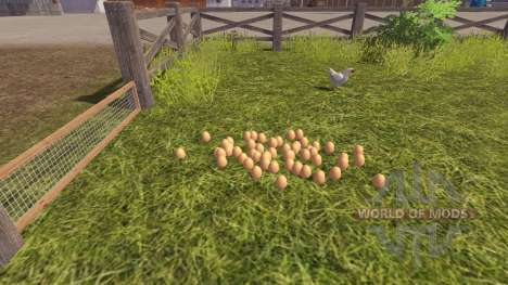 L'exactitude des oeufs pour Farming Simulator 2013