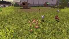Die Richtigkeit der Eier