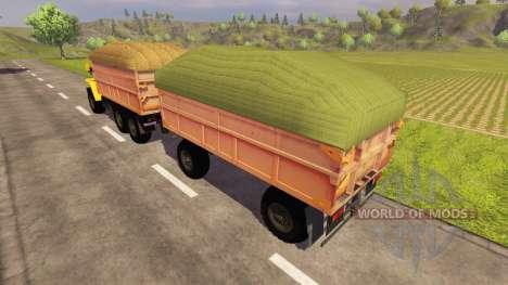 Landwirtschaftlicher Anhänger für Farming Simulator 2013