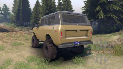 International Scout II 1977 buckskin für Spin Tires