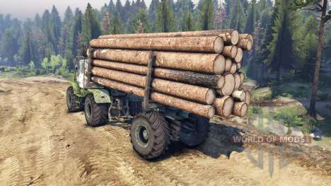 T-150K Holz für Spin Tires
