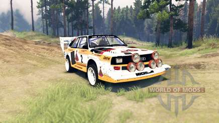 Audi Sport quattro S1 für Spin Tires