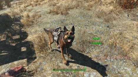 Cheat armure pour les chiens pour Fallout 4