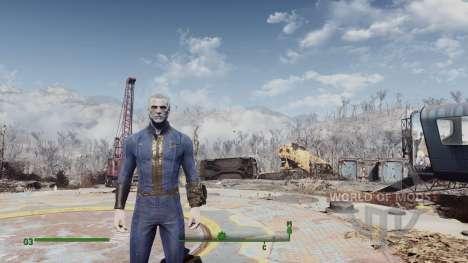 Stalker Lightning für Fallout 4