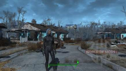 Changement de sexe pour Fallout 4