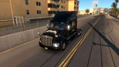 Skin Metallica for Peterbilt 579