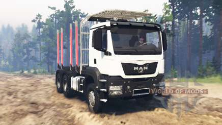 MAN TGS 26.480 pour Spin Tires