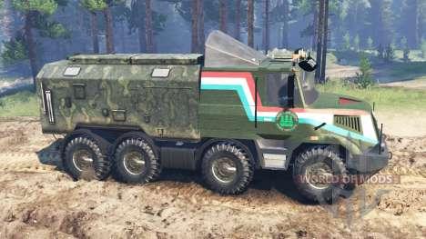 Tatra 163 Jamal 8x8 für Spin Tires