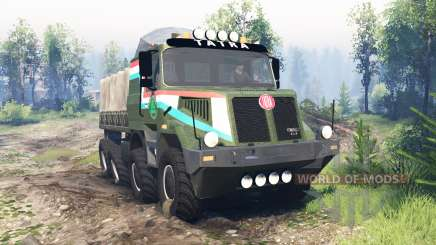 Tatra 163 Jamal 8x8 v6.0 pour Spin Tires