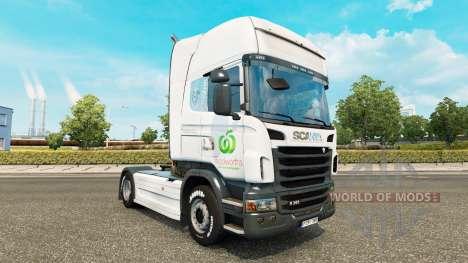 Haut Woolworths für LKW der Marken DAF, Scania u für Euro Truck Simulator 2