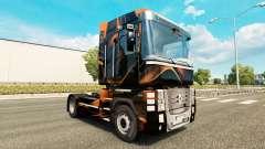 Mat de peau d'Orange pour Renault camion