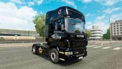 Haut Euro Truck Simulator für LKW Scania