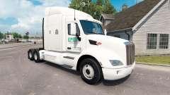 Epes Transport skin für den truck Peterbilt 579