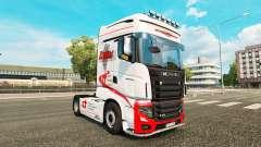 Ducs de Transport de la peau pour Scania camion
