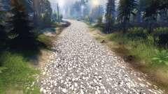 Textur der grauen asphalt mit weißen Kies