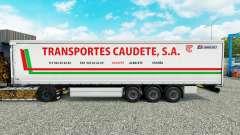 Haut Transportes Caudete S. A. curtain semi-trai