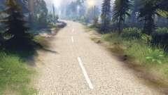 Le clair de la texture de la route à deux voies