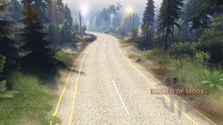La texture de la route à deux voies, le marquage de la chaussée pour Spin Tires