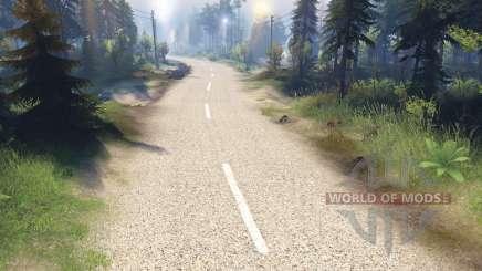 Le clair de la texture de la route à deux voies de l'asphalte pour Spin Tires