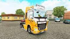 Nielsen skin for DAF truck