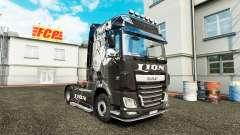 Peau de Lion pour DAF camion