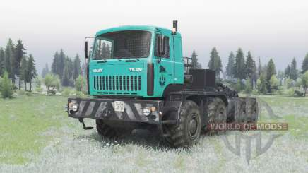 MZKT 7429-010 turquoise pour Spin Tires