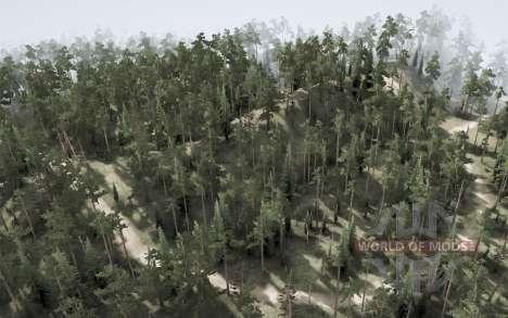 Backwoods pour Spintires MudRunner