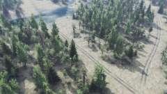 Russe labyrinthe
