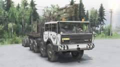 Tatra T813 Kings Off-Road 2