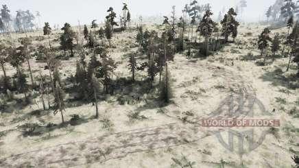 Qui est le Forestier je Forester pour MudRunner